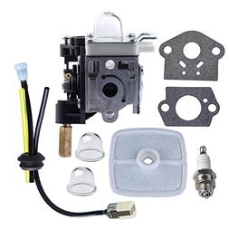 HIPA Carburetor with Fuel Maintenance Kit Spark Plug for ECH