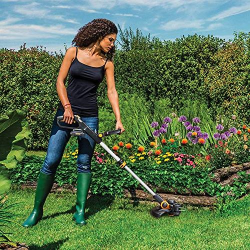 Worx WG163 GT 3.0 20V Cordless with 2 Included